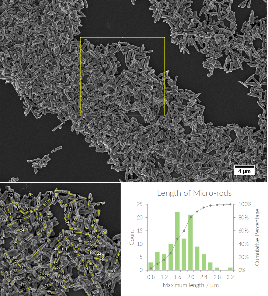 scanning electron micrograph of rod-shaped particles and histogram of length distribution